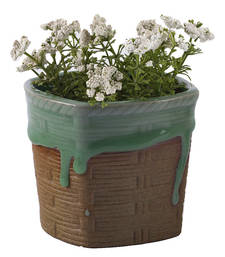 Buy Charming Green & Beige Contemporary Patterned Planter Pot pot online