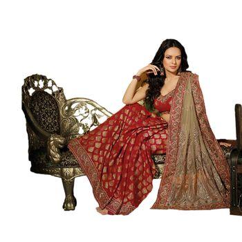 Hypnotex Net Maroon and Mehndi Color Designer Saree Dot9017B