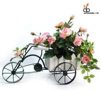 Roses on wheels (Light Pink)